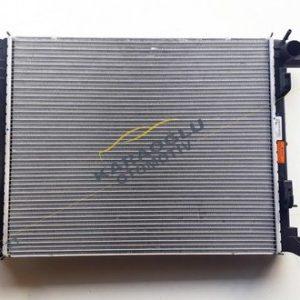 Renault Megane 4 Su Radyatörü 214109798R 214108175R
