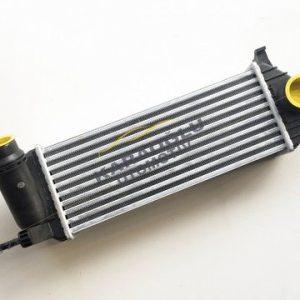 Renault Kangoo 3 Turbo Radyatörü 144963234R