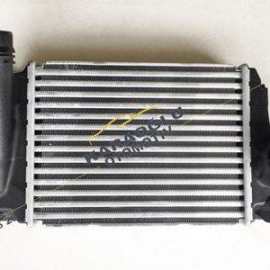 Renault Megane 4 Kadjar Dizel Turbo Radyatörü 144614EA0A 144614EA1A